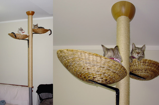 Cat Tree out of clothing stand